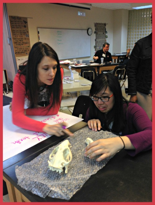 Curiosity in evidence as Rebecca Kornack and Winnie Ho Investigate Skulls at an ISI P.D. Event